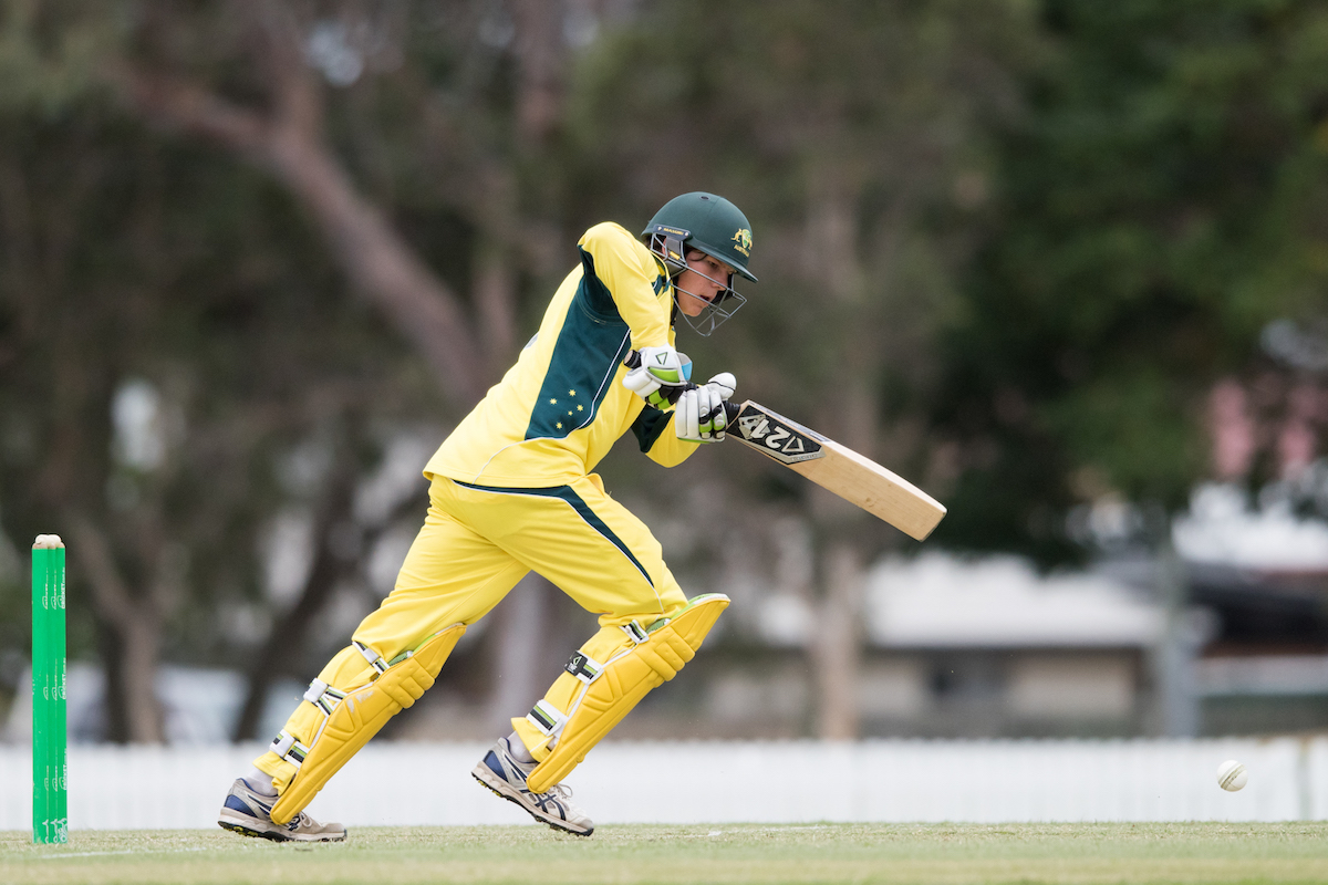 south australia cricket news